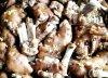 Orkaitėje apkeptos kiaulių kojos