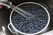 Mėlynių uogienė