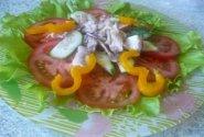 Gaivios salotos su vištiena