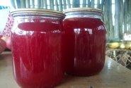 Raudonųjų serbentų drebučiai su vanile
