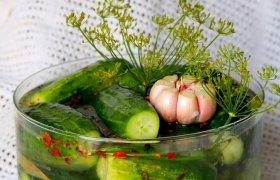 Parauginti agurkai