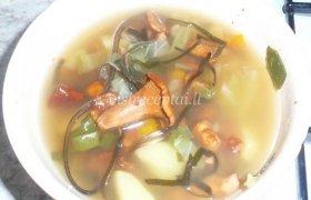 Voveraičių sriuba su jūros kopūstais