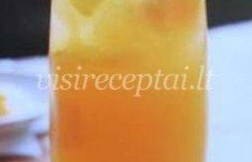 Gaivusis kokteilis