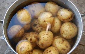 Keptos bulvės folijoje, žarijose