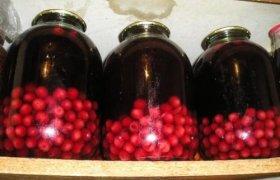 Konservuotas vyšnių kompotas