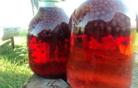Raudonųjų serbentų kompotas