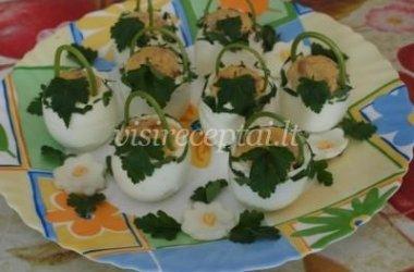 Kiaušinių krepšeliai