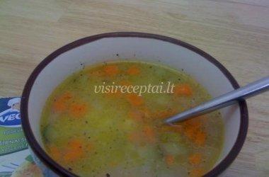 Daržovių sriuba su raugintais agurkais