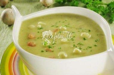 Tiršta pieniška daržovių sriuba