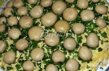 Salotos su marinuotais pievagrybiais ir majonezu